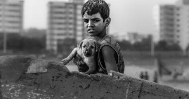 Photo by Patrick Hendry on Unsplash